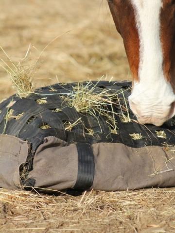 Little Bit hay pillow