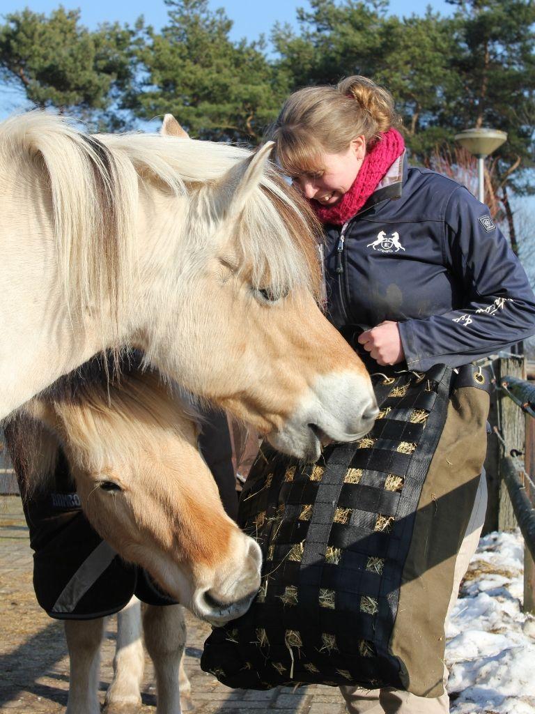 slowfeeder meerdere paarden