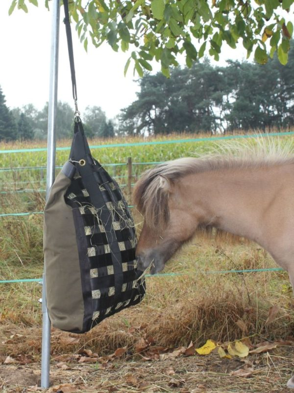 slowfeeder pony